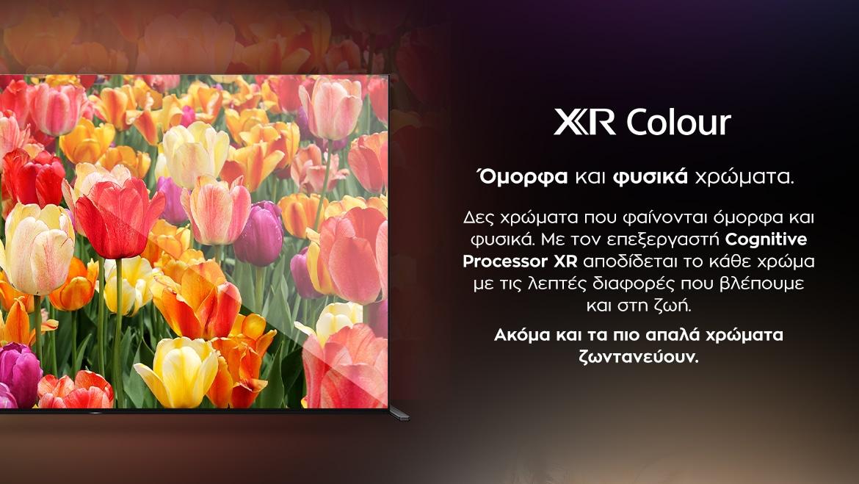SONY Bravia XR OLED - Εικόνα XR Colour